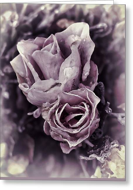 Purple Elegance Greeting Card