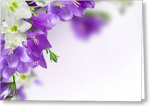 Purple Flower Frames Greeting Card by Boon Mee