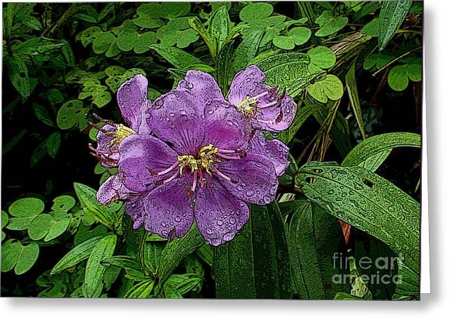 Purple Flower Greeting Card by Sergey Lukashin