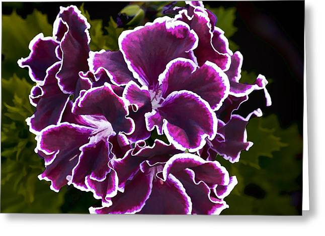 Greeting Card featuring the digital art Purple Gernaium by Photographic Art by Russel Ray Photos