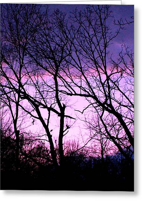 Greeting Card featuring the photograph Purple Haze by Candice Trimble