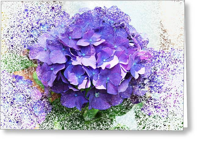 Purple Hydrangea Abstract Greeting Card by Judy Palkimas