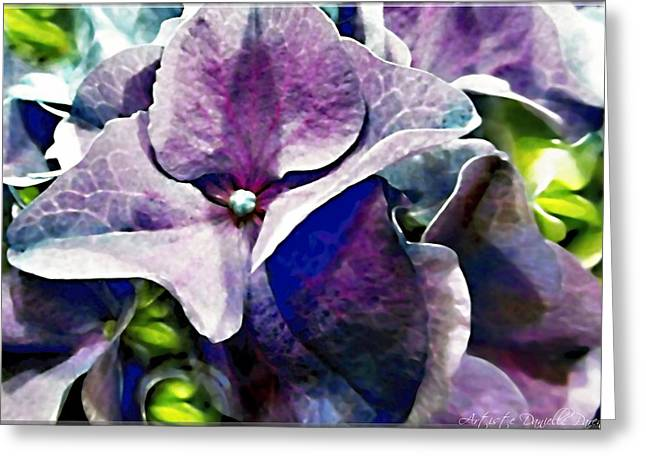 Purple Hydrangea  Flower Greeting Card by Danielle  Parent