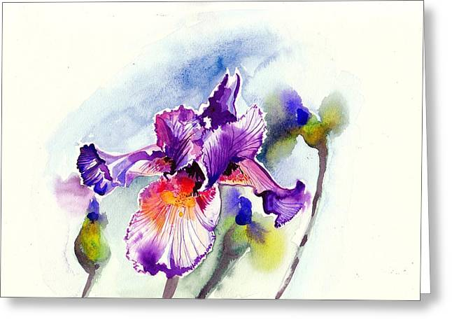 Purple Iris With Buds Watercolor Greeting Card by Tiberiu Soos