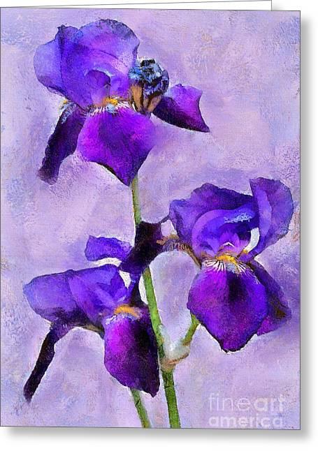 Purple Irises - Painted Greeting Card
