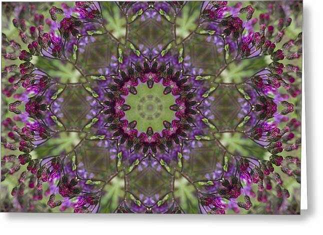 Purple Ironweed Kaleidoscope Greeting Card