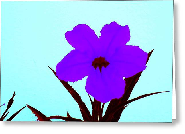 Purple Jack Flower Greeting Card