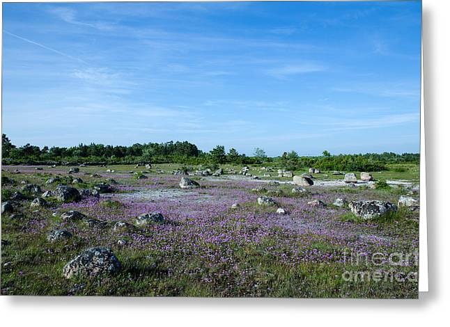 Greeting Card featuring the photograph Purple Landscape by Kennerth and Birgitta Kullman