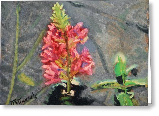Purple Loosestrife Greeting Card by Michael Daniels