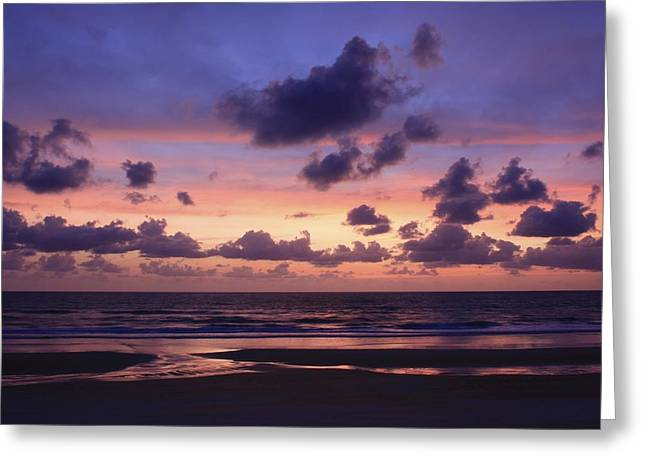 Purple Morning Greeting Card by Kimberly Oegerle