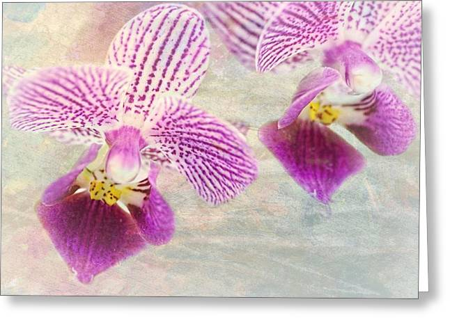 Purple Orchid 2 Greeting Card