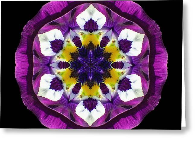 Purple Pansy II Flower Mandala Greeting Card
