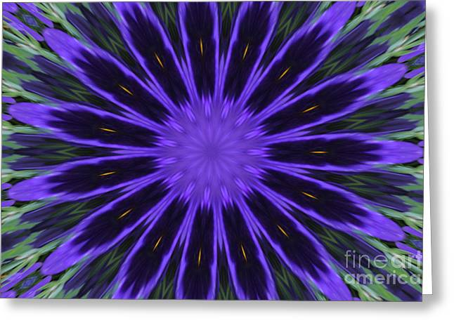 Purple Pansy Star Graphic Art Greeting Card