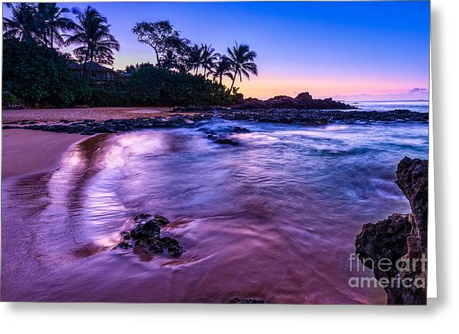 Purple Paradise Greeting Card by Jamie Pham