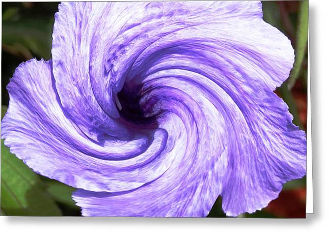 Purple Petunia Twirl Greeting Card