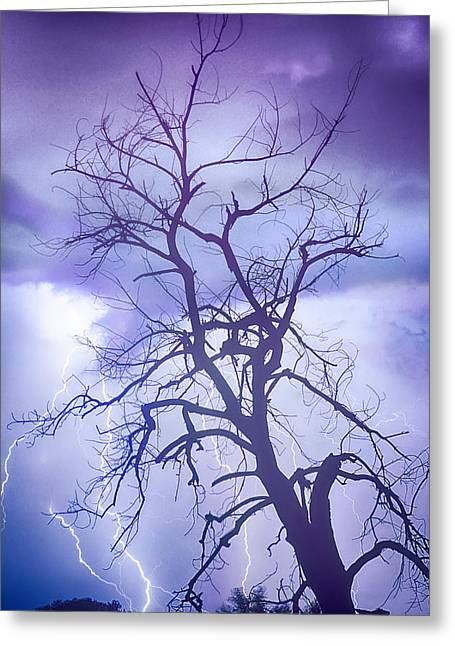 Purple Rain Greeting Card by James BO  Insogna