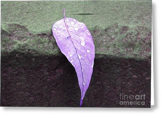 Purple Rain Greeting Card by Michael Krek