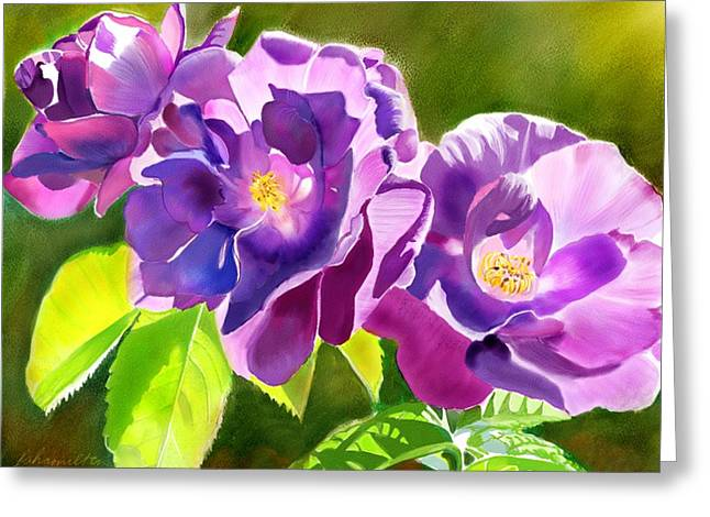 Purple Roses Greeting Card by Joan A Hamilton