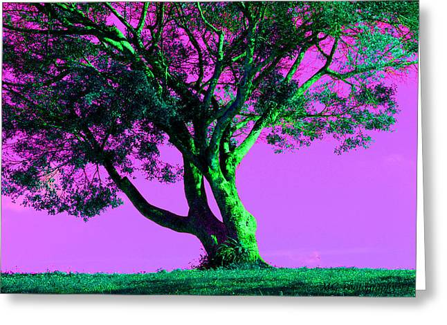 Purple Sky Tree Greeting Card