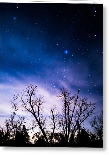 Purple Stars Greeting Card by Shelby  Young