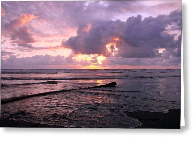 Purple Pink Sunset Greeting Card by Athena Mckinzie
