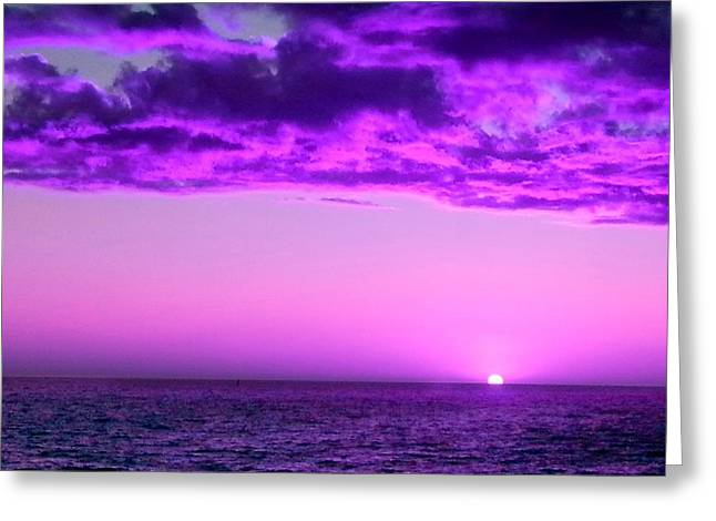 Greeting Card featuring the photograph Purple Sunset by Steed Edwards