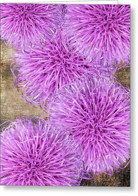 Purple Thistle - 2 Greeting Card
