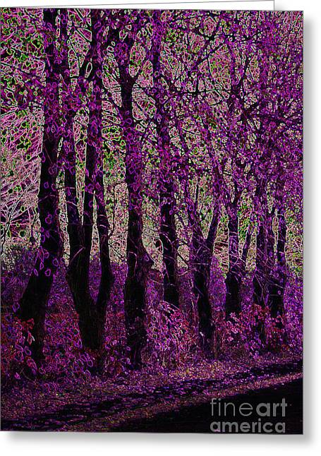 Purple Trees Greeting Card by Carol Lynch