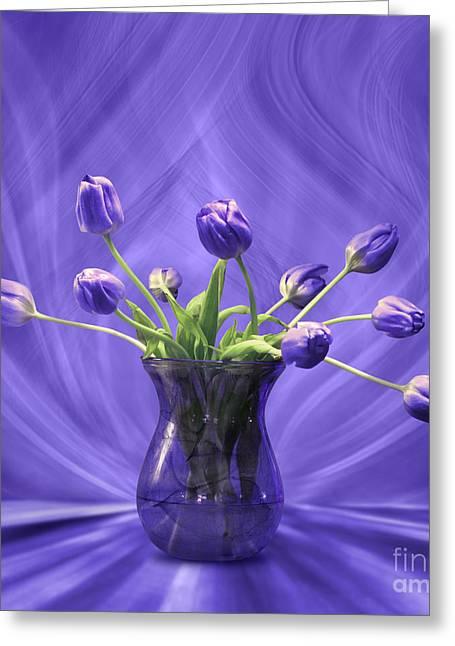 Purple Tulips In Purple Room Greeting Card