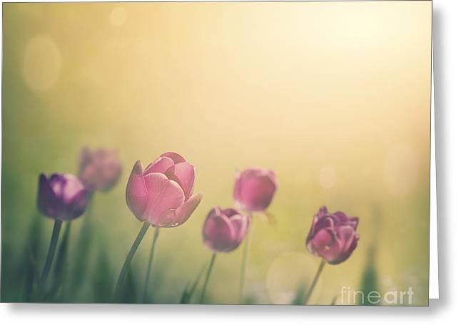 Purple Tulips Greeting Card by Mythja  Photography