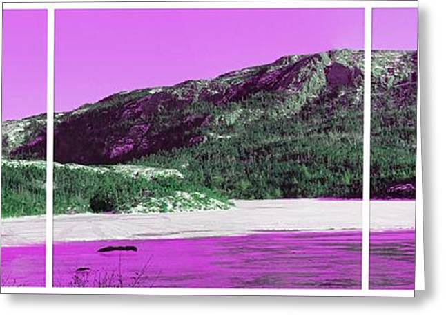 Purple Winter Triptych Greeting Card by Barbara Griffin