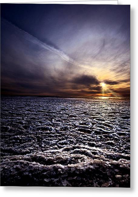 Pushed Ashore Greeting Card by Phil Koch