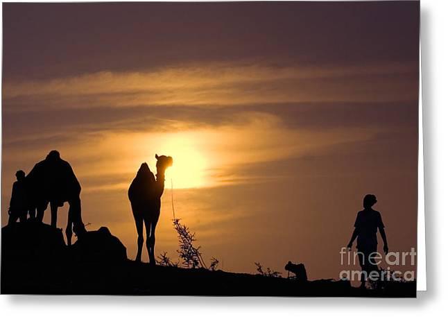 Pushkar Sunset Rajasthan India Greeting Card by Neville Bulsara