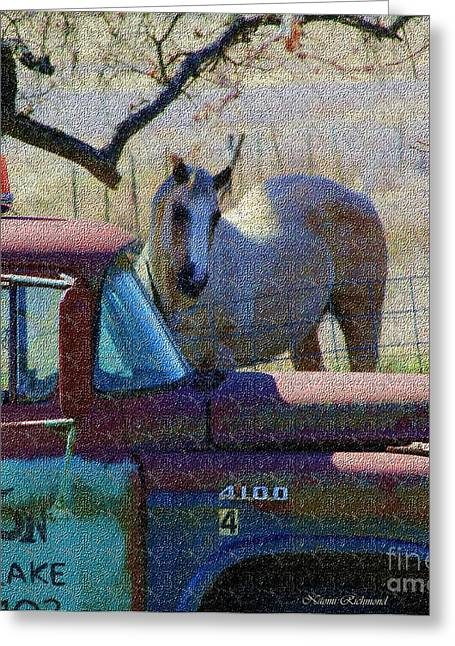 Put Out To Pasture Greeting Card by Naomi Richmond