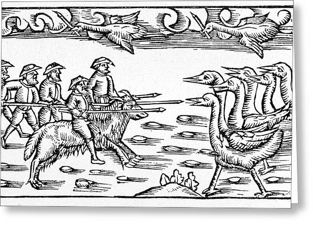 Pygmies Fighting Cranes Greeting Card by Cci Archives