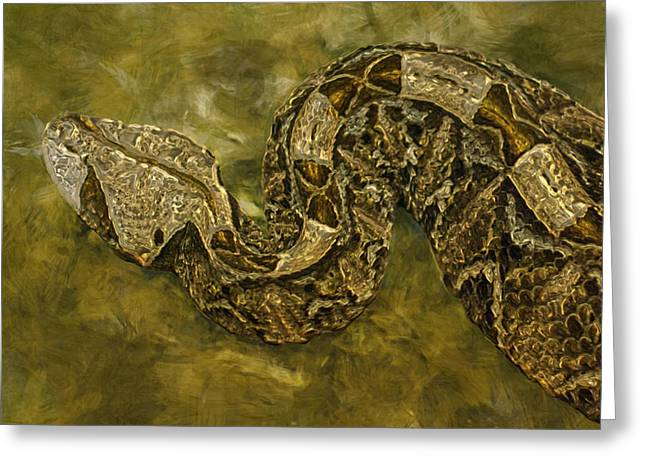 Python Greeting Card by Jack Zulli