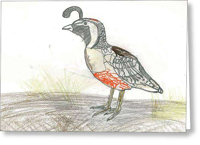 Greeting Card featuring the drawing Quail Bird by Ethan Chaupiz