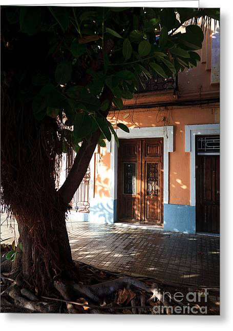 Quaint Spanish House In Shadow Of Old Tree  Greeting Card by Peter Noyce