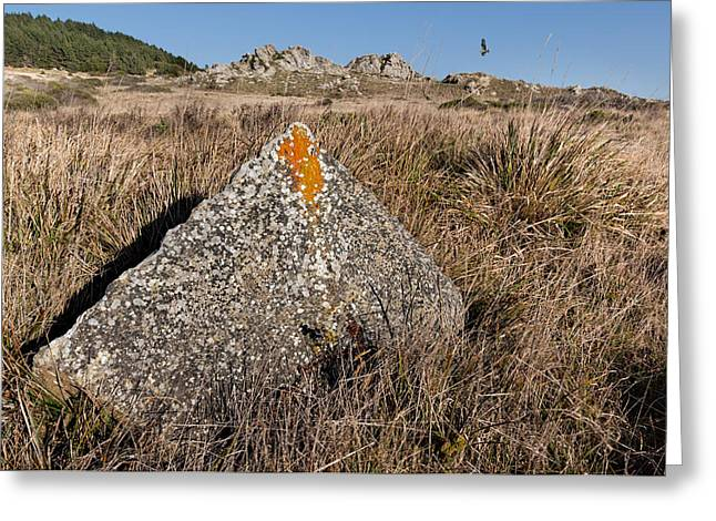 Quarried Stone Greeting Card