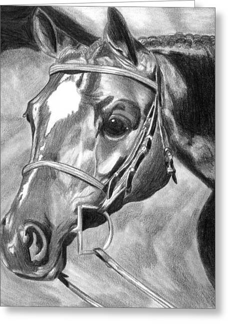 Quarter Horse Hunter Greeting Card by Olde Time  Mercantile