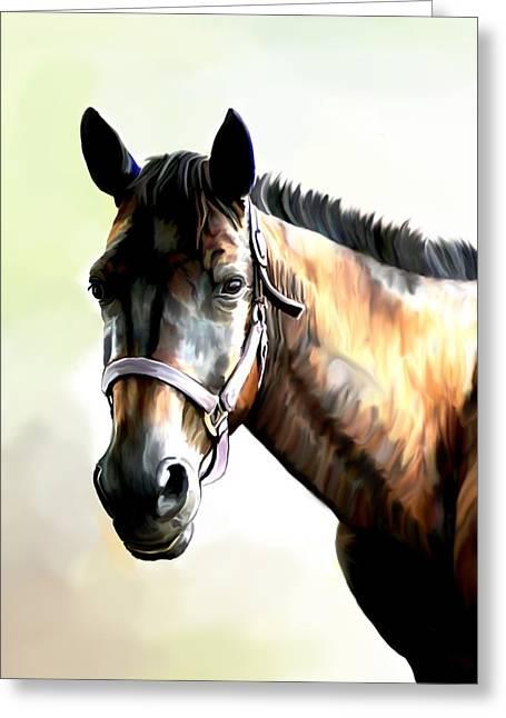 Quarter Horse Greeting Card by Karen Sheltrown
