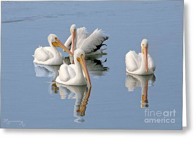 Quartet's Reflections Greeting Card by Mariarosa Rockefeller