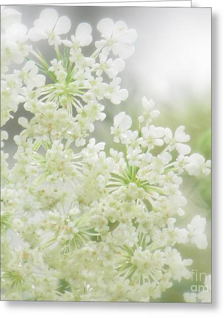 Greeting Card featuring the photograph Queen  Anne Lace by France Laliberte