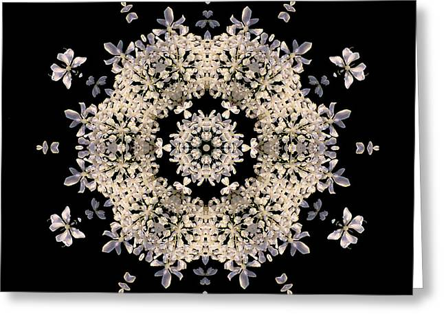 Queen Anne's Lace Flower Mandala Greeting Card by David J Bookbinder