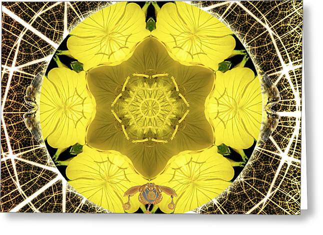 Queen Bee-nectar Of Life Greeting Card