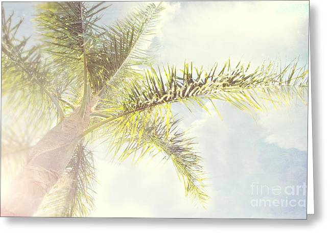 Queen Palm Greeting Card