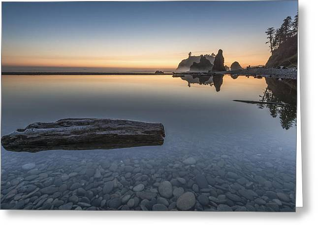 Quiet Alone And Still Greeting Card by Jon Glaser
