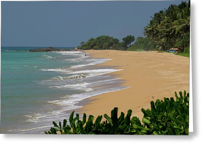 Quiet Beach Along A2 Road, Betota Greeting Card by Panoramic Images