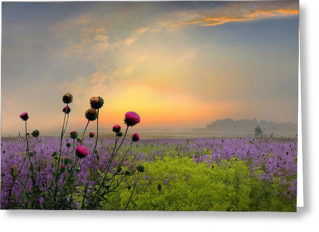 Quiet Evening Greeting Card by Igor Zenin