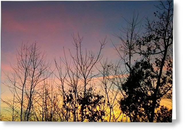 Quiet Evening Greeting Card by Linda Bailey